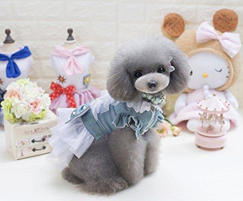 PET Cloth Home Frühling und Sommer Neue Haustierkleidung Hundekleidung Teddy Dog Rock Palast Wind Jeansrock (Color : Light Blue, Size : L)