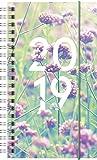Brunnen 1074985 Taschenkalender Modell 749, 2 Seiten = 1 Woche, 95 x 170 mm, PP-Einband Summertime, Kalendarium 2019