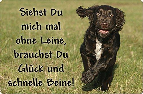+++ Deutscher WACHTELHUND - Metall WARNSCHILD Schild Hundeschild Sign - DWH 04 T12