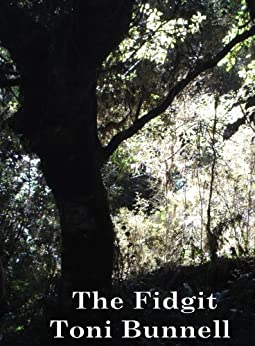 The Fidgit by [Bunnell, Toni]