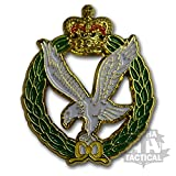 ARMY AIR CORPS REGIMENT PIN BADGE