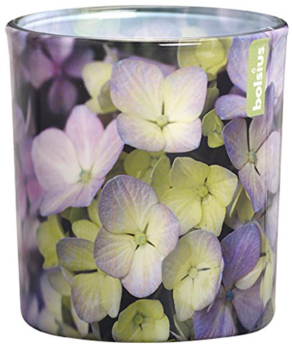 Duftglas Floral Garden 80/72 mm (6 Stück) - Hortensie