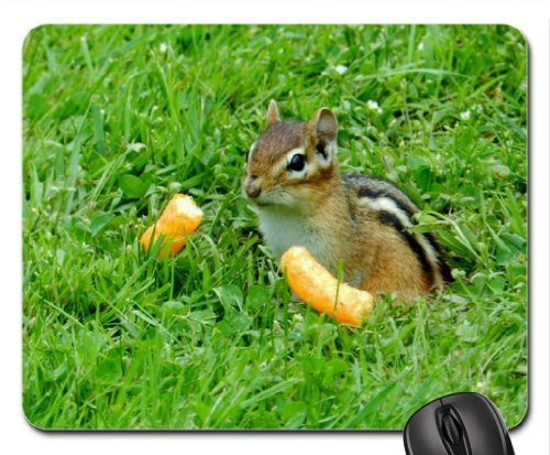 time-for-cheetos-mouse-pad-mousepad-rodents-mouse-pad-by-rock-bull