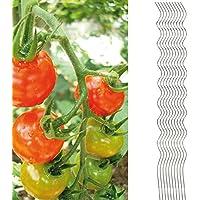 10x Tomatenspiralstab 180cm voll verzinkt Tomatenstab Tomaten Ranke Pflanzstab Stahl Profi Qualität (1-50 Stück) Tomatenspiralstäbe
