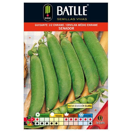Portal Cool Batlle Gemüsesamen - Medium Enrame Senador Erbsen (100G) -