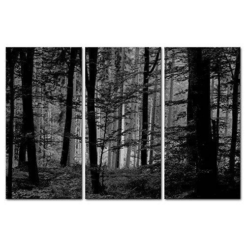 Juego de 3 lienzos decorativos con impresión Giclée y diseño de un bosque en tonos blancos y negros, de estilo moderno, ideal para salones