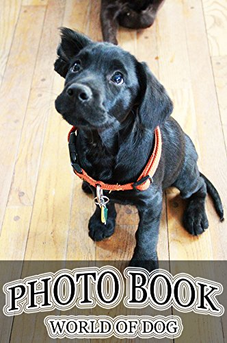 photo-book-world-of-dog-vol40-photography-dog-picture-books-english-edition