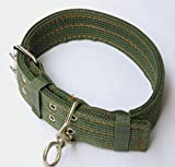 Pets Empire Pet Dog Metal Buckle 2-rows - Nylon Fabric Belt Strap Adjustable Collar For Heavy dogs (Color May Vary)