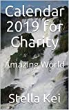 Calendar 2019 for Charity: Amazing World (English Edition)