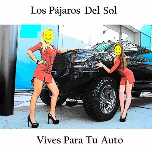 Vives para Tu Auto