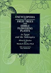 Encyclopedia of Fruit Trees and Edible Flowering Plants in Egypt and the Subtropics (Modern Arabic Writing)
