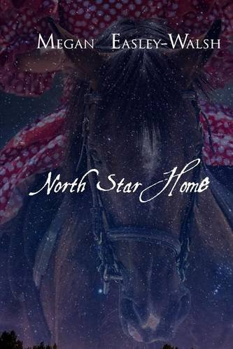 North Star Home