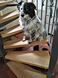 Tappeti per cane Tappetino Antiscivolo Fein in rilievo, 5pz. in trasparente 65cm x 15cm, per 5PZ gradini. Invece o Scale Tappeto 0,25mm sottile autoadesivo