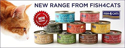 Fisch 4Katzen Hervorragende Qualität Lebensmittel Pet Truck gemischt Auswahl 10x 70g Dosen (Aromen Lebensmittel Gemischten)