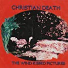 Wind Kissed Pictures