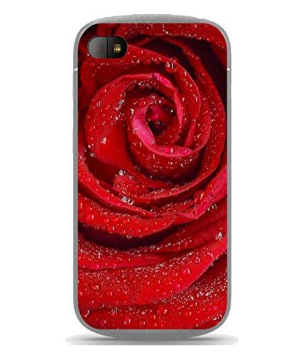 PrintVisa Designer Back Case Cover for Blackberry Q10 (Romantic Valentine Beauty Petal Occasion Gift)