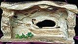 Krippenstall als Skulptur - in Bethlehem aus Olivenholz handgeschnitzt. Maße variabel circa 30 x 50 x 20 cm (HxBxT), die Maße sind abhängig vom Stamm des Olivenbaumes.