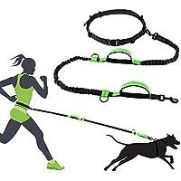 [Gesponsert]Greensen Jogging Hundeleine, Reflektierende Einstellbar Hundeleine mit Bauchgurt (145-188 cm), bis zu 70 Kg für Große und Mittelgroße Hunde–Zum Joggen, Spazieren, Wandern, Radfahren