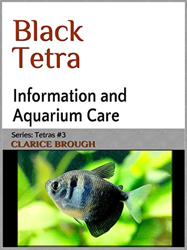Black Widow Tetra (Tetras Book 3) (English Edition) (Black Widow Fisch)