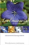 Les Emanants : Reconnaître et accueillir les Esprits de la Nature