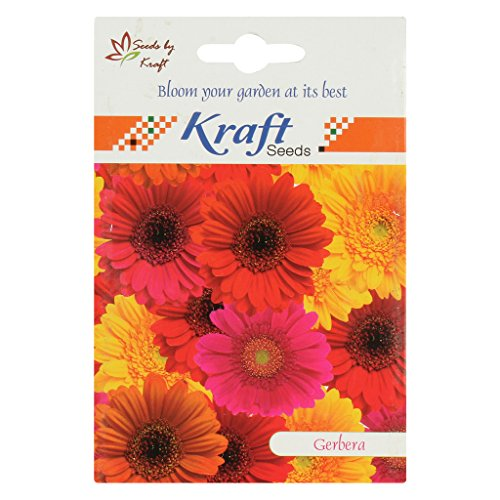 Kraft Seeds California Giant Mix Gerbera Seeds by Kraft Seeds