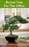 Bonsai Tree for the Office: How to Decor Your Office With Bonsai Tress
