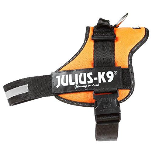 Julius-K9, 162OR-2, K9 Powergeschirr, Größe: 2, orange