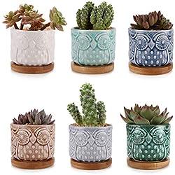 Macetas de Cactus para Decoración de mesa de centro
