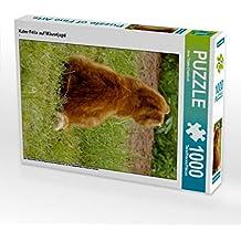 Kater Felix auf Mäusejagd 1000 Teile Puzzle hoch: Felix und Raspel sind zwei befreundete Kater, die eine außergewöhnliche Freundschaft verbindet. (CALVENDO Tiere)