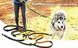 Petcomer Smart 7 in 1 Multifunktions-Hundeleine Heavy Duty Einstellbare Durable Nylon 3M Reflektierende Material Hands Free Walking Training Laufen Leine für 2 Hunde (L:1″ Width,3.6Ft-6.6Ft, Grün) - 6