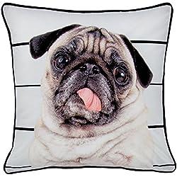 Just Contempo–Funda para cojín de perro carlino, multicolor, 43x 43cm)