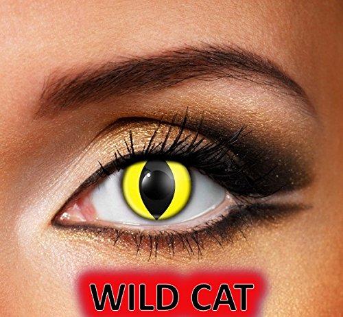 MesmerEyez Wild Cat - 1 Tag lustige Linsen - Halloween Karneval Party - XtremeEyez - pro 2