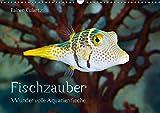 Fischzauber - Wundervolle Aquarienfische (Wandkalender 2019 DIN A3 quer): Kalender mit bezaubernden Aufnahmen von kleinen Fischen in Aquarien. (Monatskalender, 14 Seiten ) (CALVENDO Tiere)