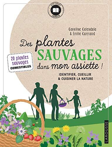 Des plantes sauvages dans mon assiette ! par  Caroline Calendula, Emilie Cuissard