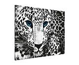3 teiliges Bild Bilder gesamt 130x90cm Tierbilder – Leopard mit blauen Augen