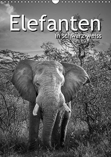 Elefanten in schwarz-weiss (Wandkalender 2017 DIN A3 hoch): Die sanften Dickhäuter Afrikas...