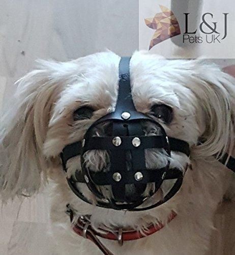 Leder Hunde Maulkorb für Shih Tzu und andere flache Gesicht kurze Schnauze des Hundes -
