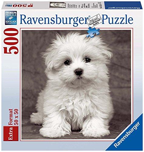 Ravensburger - Cuadrado: cachorro maltés, puzzle de 500 piezas (15221 6)