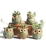 Eule Topf Mini Cartoon Keramik Sukkulenten Kaktus Pflanzer Topf Set Halter Kleine Bonsai Container für Dekoration