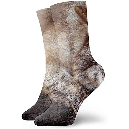 Gre Rry Impresión digitalWolf Animals Wildfire Brown Calcetines para Dormir Unisex Calcetines de fútbol