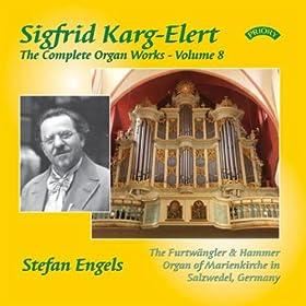The Complete Organ Works of Sigfrid Karg-Elert: Volume 8 - The Furtwangler & Hammer Organ of Marienkirche in Salzwedel, Germany