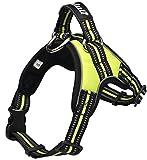 Hundegeschirr für kleine/ mittelgroße/ große Hunde und Welpen | reflektierendes 3M Sicherheitsgeschirr | gefüttert, weich und atmungsaktiv | S | grün