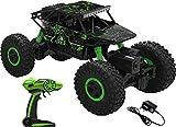 #6: Sajani Rock Crawler Remote Control Monster Car -Green