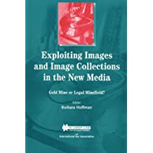 Exploiting Images and Image Collections in the Mew Media: Gold Mine or Legal Minefield?