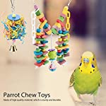 fdit wooden parrot toys colorful wood birds standing chewing climbing swing stairs ball toys gift 2pcs Fdit Wooden Parrot Toys Colorful Wood Birds Standing Chewing Climbing Swing Stairs Ball Toys Gift 2Pcs 51hZV5IXu L