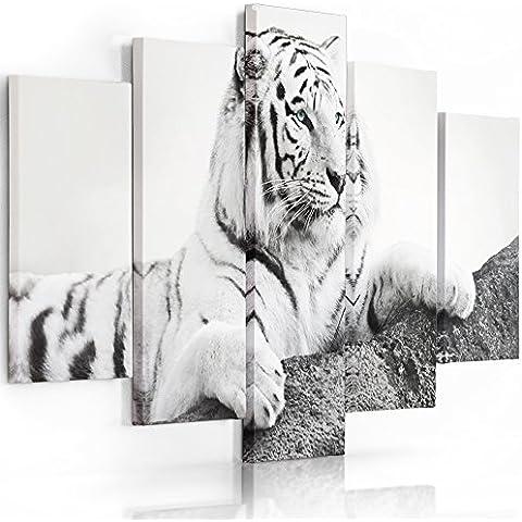 Feeby Frames, Cuadro en lienzo - 5 partes - Cuadro impresión, Cuadro decoración, Canvas Tipo A, 100x200 cm, ANIMALES, TIGRE, UN COLOR, BLANCO Y NEGRO, TURQUESA