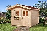 weka Gartenhaus Premium28 FT, 250 x 300, V60