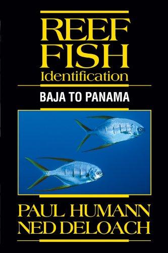 Reef Fish Identification: Baja to Panama -