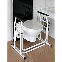 Asidero de inodoro móvil con soporte para baños (M)