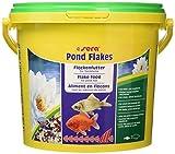 SERA Nourriture pour Poissons Pond Flakes 3,8 L